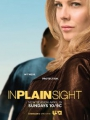 In Plain Sight 2008