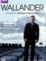 Wallander 2008