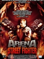 Arena of the Street Fighter 2012