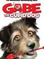 Gabe the Cupid Dog 2012