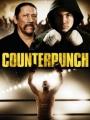 Counterpunch 2013