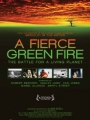 A Fierce Green Fire 2012