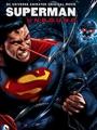 Superman: Unbound 2013