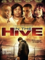 In the Hive 2012