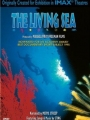 The Living Sea 1995