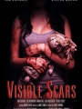 Visible Scars 2012