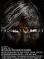The Phoenix Rises 2012