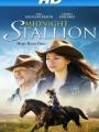 Midnight Stallion 2013