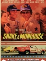 Snake and Mongoose 2013