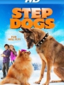 Step Dogs 2013