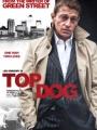 Top Dog 2014