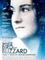 White Bird in a Blizzard 2014