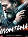 Montana 2014