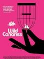 Wild Canaries 2014