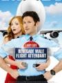 Larry Gaye: Renegade Male Flight Attendant 2015