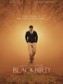 Blackbird 2014
