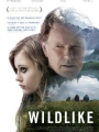 Wildlike 2014