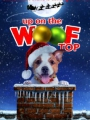 Up on the Wooftop 2015