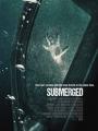 Submerged 2015