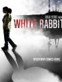 White Rabbit 2015