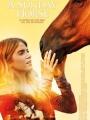 A Sunday Horse 2015
