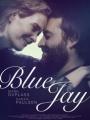 Blue Jay 2016