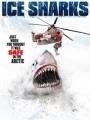 Ice Sharks 2016