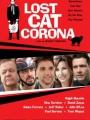 Lost Cat Corona 2017