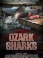 Ozark Sharks 2016