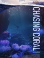 Chasing Coral 2017