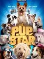 Pup Star 2019