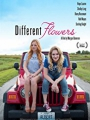 Different Flowers 2017