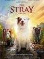 The Stray 2017