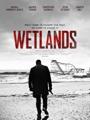 Wetlands 2017