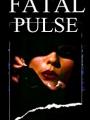 Night Pulse 2018