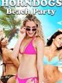 Horndogs Beach Party 2018