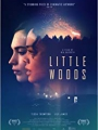 Little Woods 2018