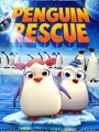 Penguin Rescue 2018