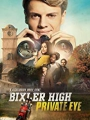 Bixler High Private Eye 2019