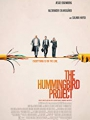 The Hummingbird Project 2018