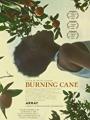 Burning Cane 2019