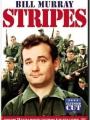 Stripes 1981