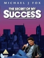 The Secret of My Succe$s 1987