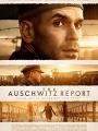 The Auschwitz Report 2021