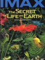 The Secret of Life on Earth 1993