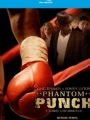 Phantom Punch 2008