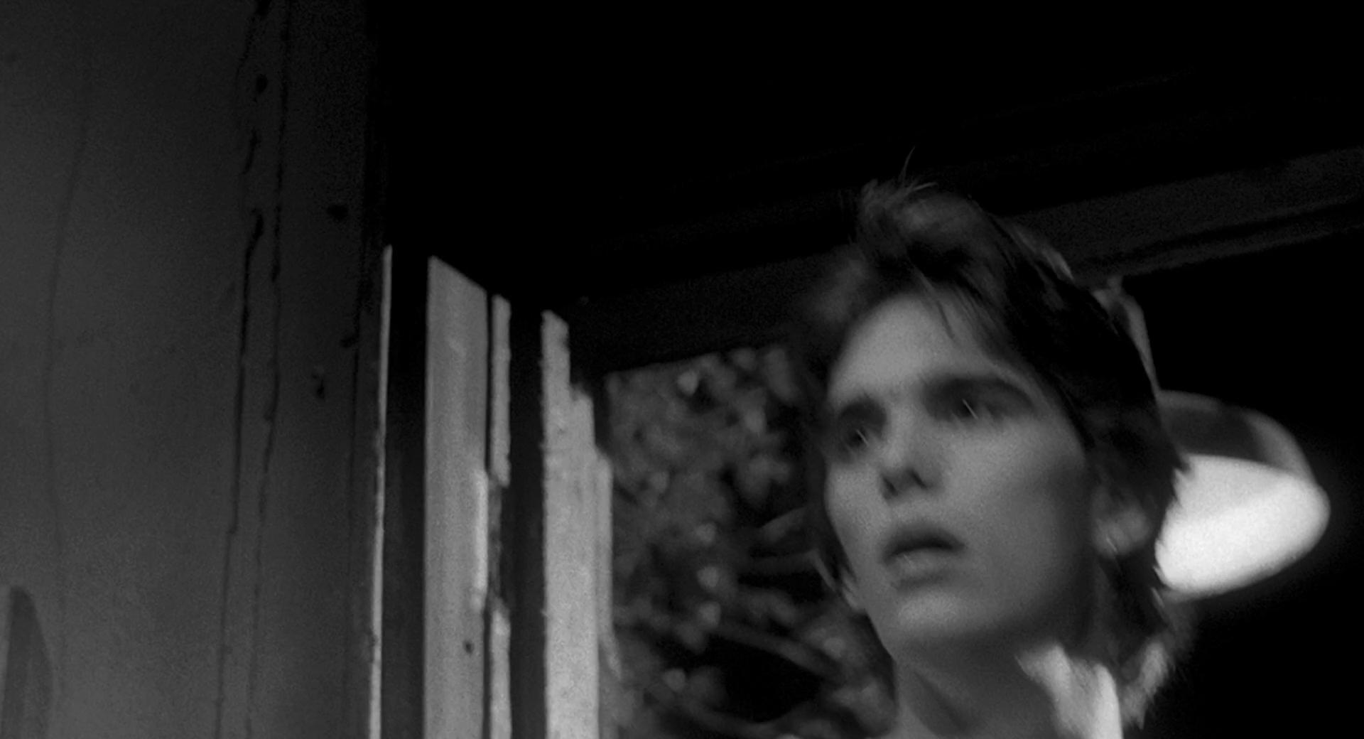 Rumble fish movie download in hd dvd divx ipad iphone for Rumble fish movie