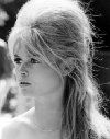 Download all the movies with a Brigitte Bardot