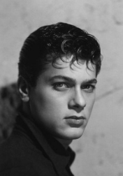 Download all the movies with a Tony Curtis