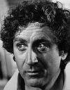 Download all the movies with a Gene Wilder